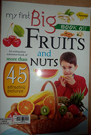 MY FIRST BIG BOOK OF  FRUITS AND NUTS