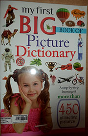 MY FIRST BIG BOOK OF  PICTURE DICTIONARY